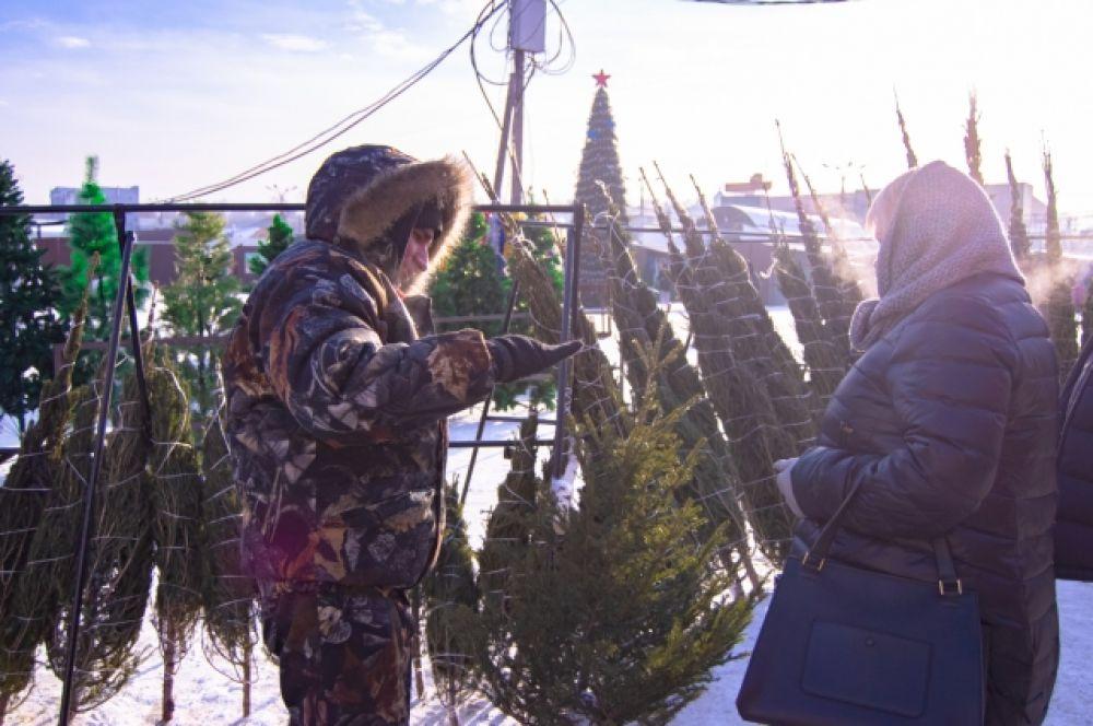 Маленькую ёлочку можно купить за 300-500 рублей, а вот ёлка в 2,5 метра может обойтись в 4 тысячи.
