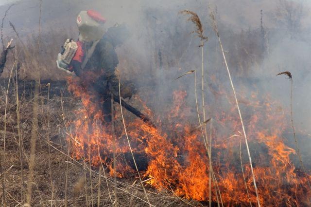 Основная причина пожаров - неосторожное обращение с огнем.