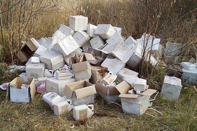 Новые правила сбора мусора позволят ликвидировать тюменские свалки