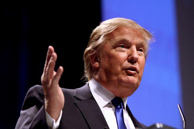 Трамп заявил, что стена на границе с Мексикой будет стальной, а не бетонной