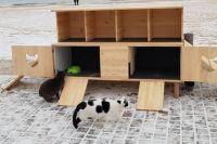 Первое жилище для животных появилось в курортном районе прямо возле моря. Инициатива местного волонтера восхитила Сеть.