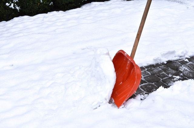 Омские студенты помогают убирать снег на улицах