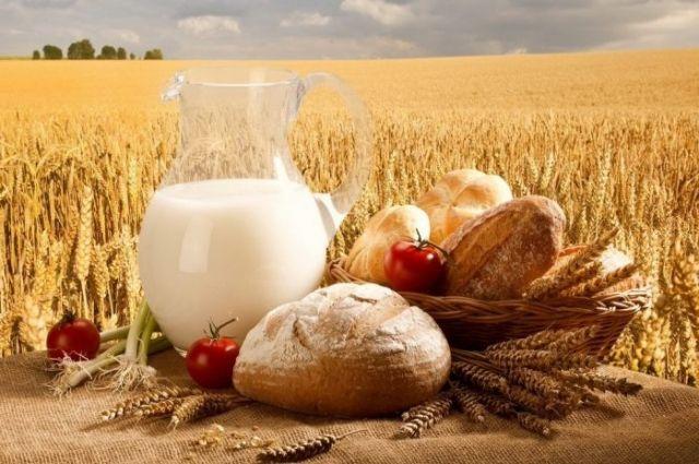 Украина стала одним из лидеров  по продаже агропродукции в Евросоюз