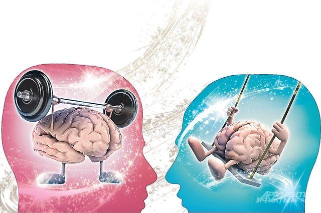 Правда ли, что у левшей и правшей мозг работает по-разному?