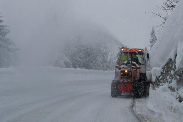 Австрию и Германию накрыли рекордные в XXI веке снегопады