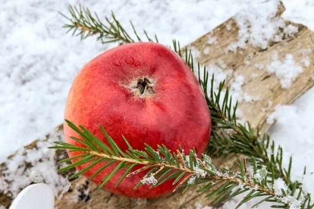 Свежие фрукты всегда должны быть в рационе.