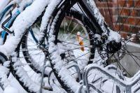 Любители зимних велогонок смогут согреваться чаем.