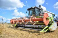 Повышать урожайность в Хабаровском крае будут с помощью ученых.