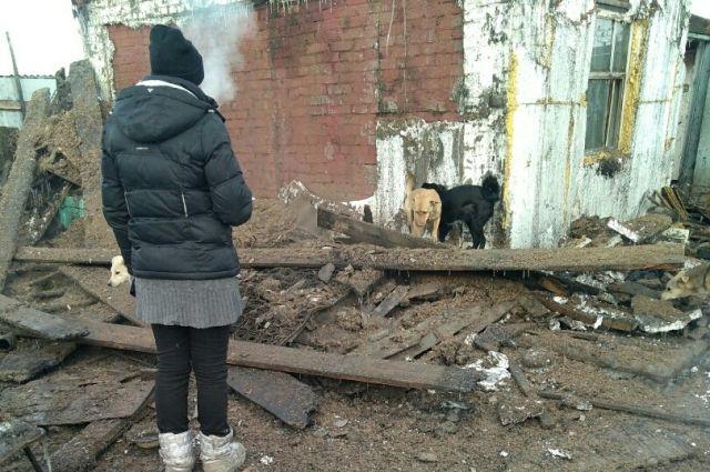 Собак удалось спасти.