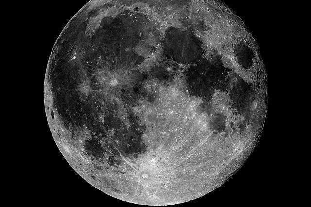Первое выросшее на Луне растение погибло от холода