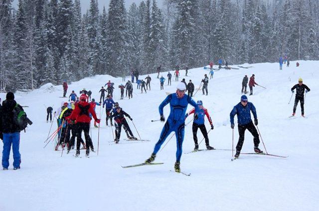 Тюменские спортсмены привезли серебро со всероссийских соревнований