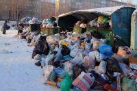 Первыми на бардак у мусорных контейнеров отреагировали социальные сети.