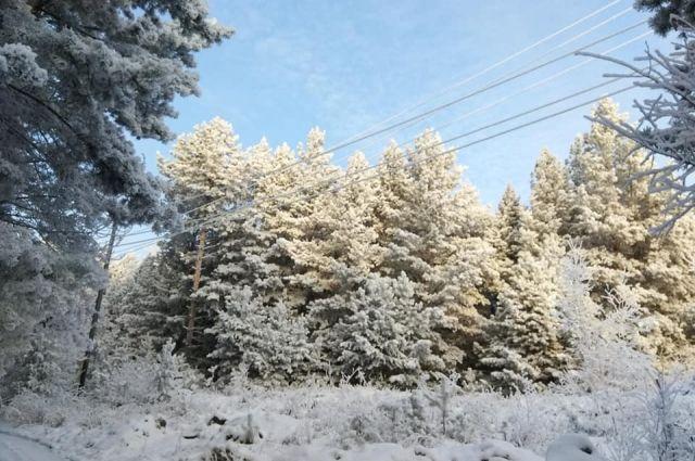 В Тюменской области уточнены сведения о 280 земельных участках