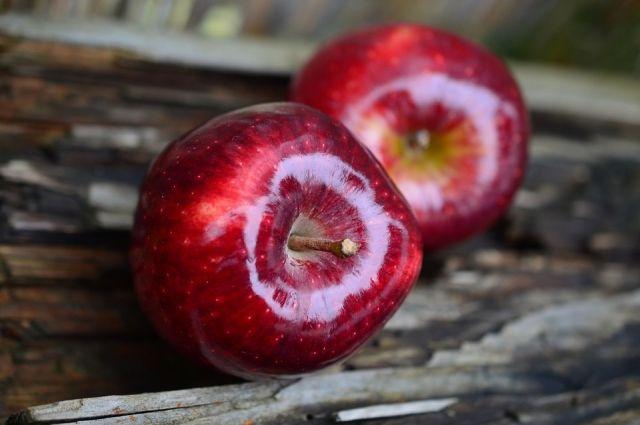 Более 200 кг польских яблок пустили под бульдозер в ЕАО.