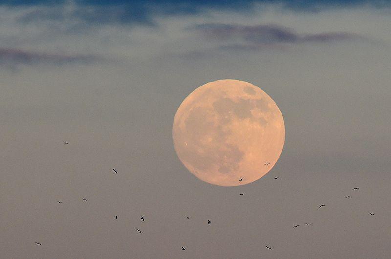Луна над городом Тенбе в Уэльсе.