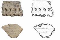 Памятники археологии, найденные в Красноселькупе, оценили эксперты