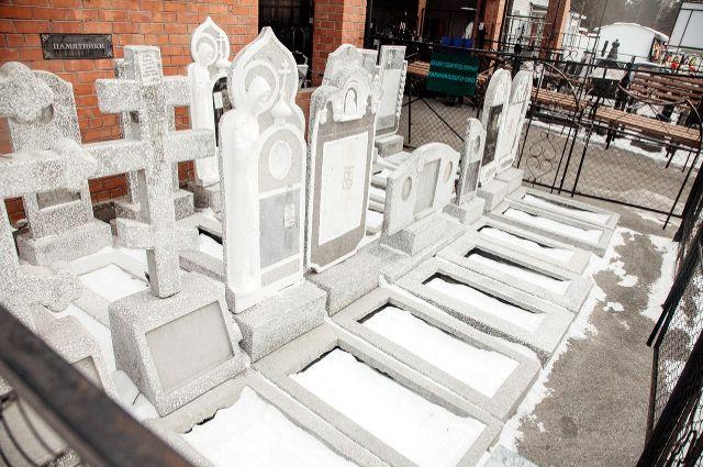 Тюменцы возмущены: на кладбище пропала собака с щенками