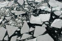 Самые опасные – бухты Гертнера, Нагаева и Мелководная.