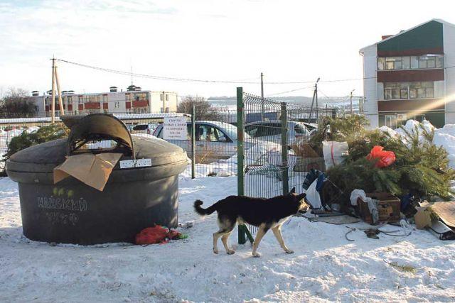 Горы мусора скапливаются во дворах.