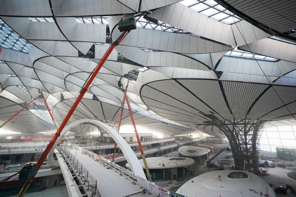 Весь транспорт, обслуживающий аэропорт будет экологически чистым.