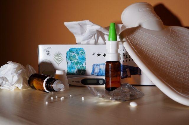 В Ижевске ОРВИ заболели 4919 человек, что также ниже эпидпорога на 17%.