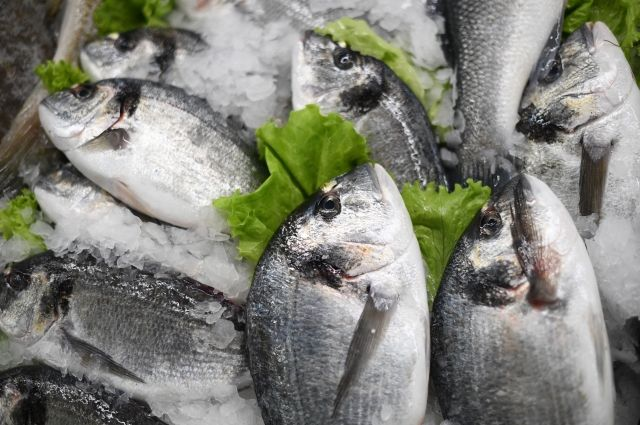 Глава Росрыболовства назвал самую полезную для здоровья рыбу