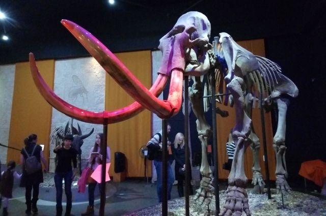 В субботу в Музее пермских древностей состоится премьера бардоперы «Трогонтериевый слон – суперкости».