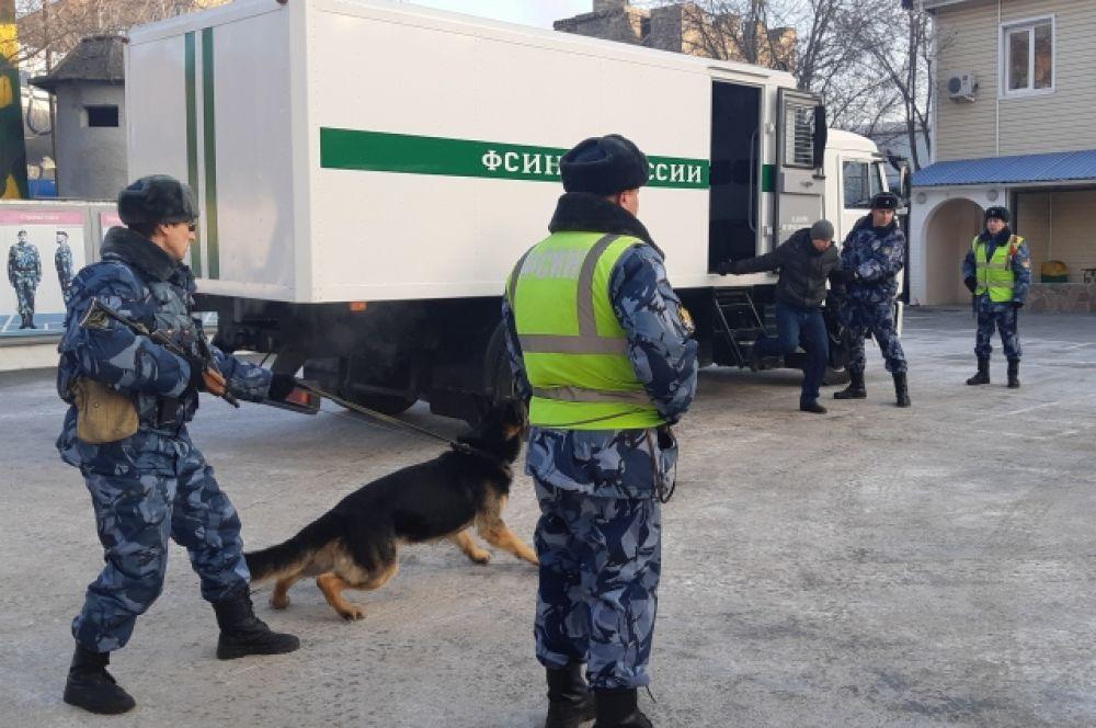 Служебная собака натаскана, чтобы предотвращать опасные моменты.