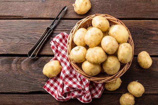 Реабилитация картошки. Правдивы ли легенды о вреде популярного корнеплода