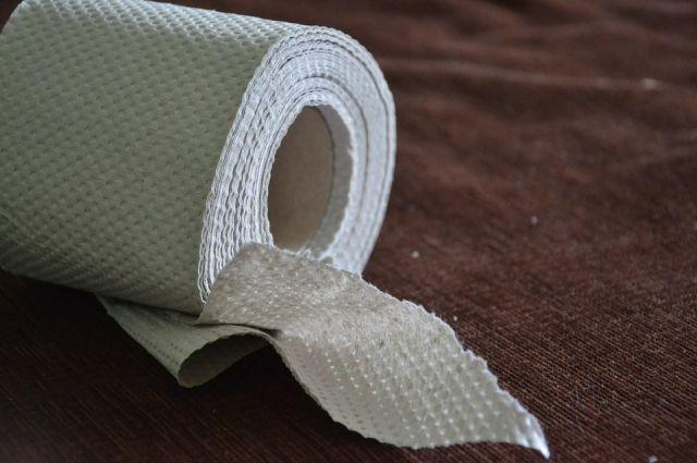 Журналистка призвала немцев отказаться от туалетной бумаги photo