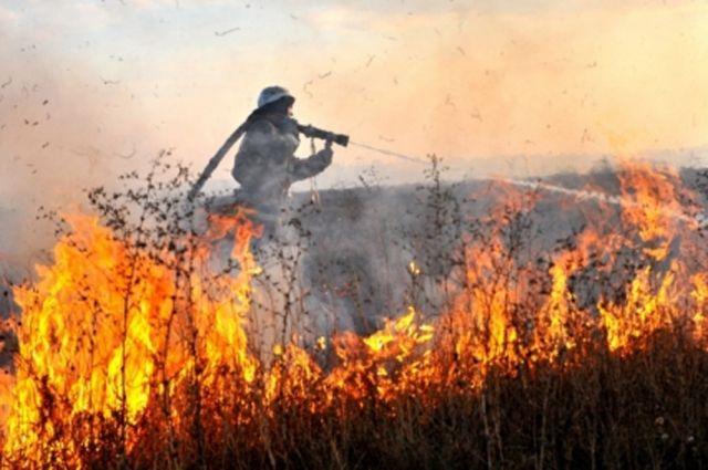 Аномальная январская жара привела к палам травы в Хабаровском крае.