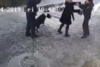 На видео попало начало конфликта: собака и женщина набрасывались на участкового.