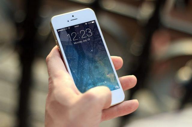 Жительница Тарко-Сале пойдет под суд за кражу телефона у подруги