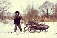 Считают валежником упавшие на землю обломки стволов и сучья деревьев длиной не более 1,5 метров.