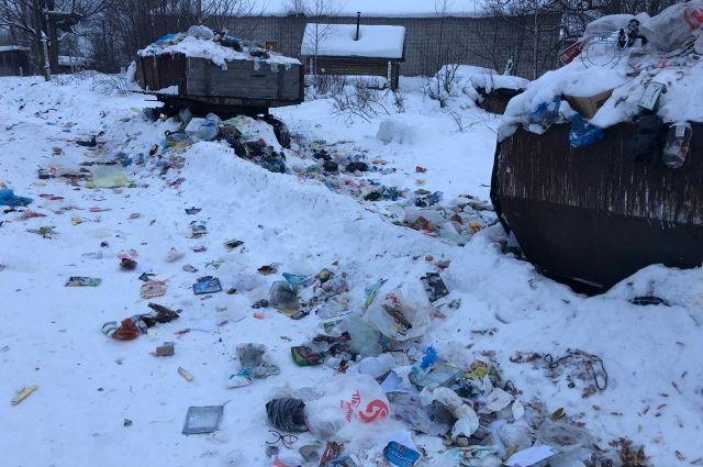 Митингующие выразили недовольство мусорным коллапсом в городе.