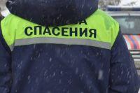 Инцидент произошел днем в воскресенье, 3 февраля.