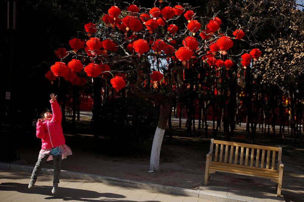 Девочка в преддверии празднования нового года в парке Дитан в Пекине.