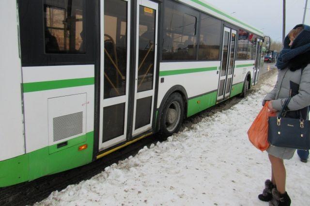 В Тобольске холода не мешают водителям автобусов работать по расписанию