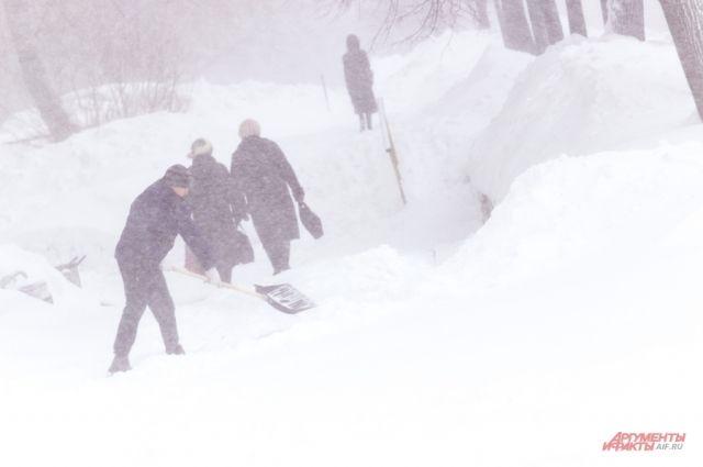 Калининградским дворникам планируют поднять зарплату