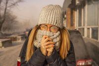 старшеклассники могут не ходить на уроки, если температура воздуха ниже 37 С.
