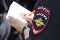 Полицейские задержали очередного вора