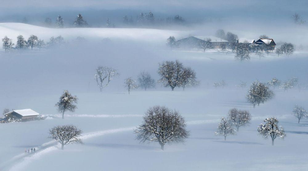 Заснеженный пейзаж под Мюнзингеном, Швейцария.