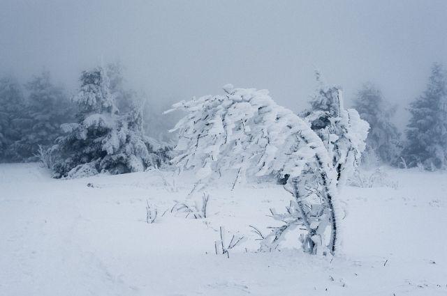 8 февраля в городе будет относительно тепло -19°С, но ветрено и снежно.