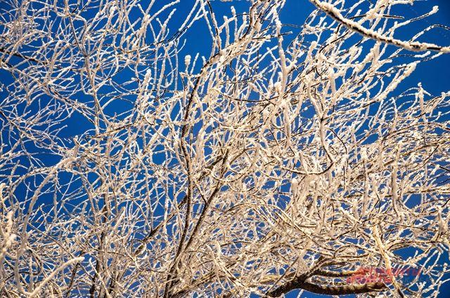 Синоптики предупреждают, что морозы будут стоять до конца февраля.