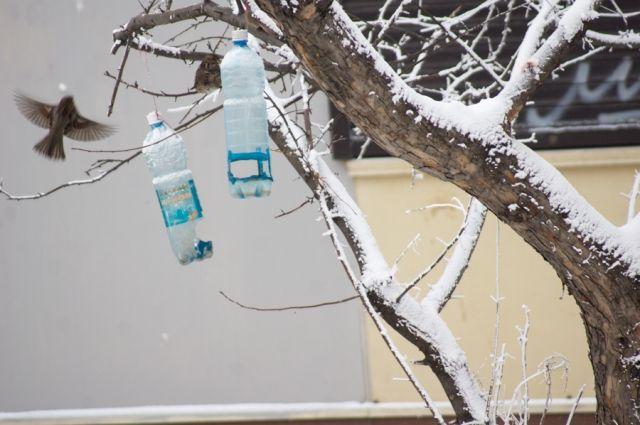 Аномальные для февраля температуры продержатся до вторника.