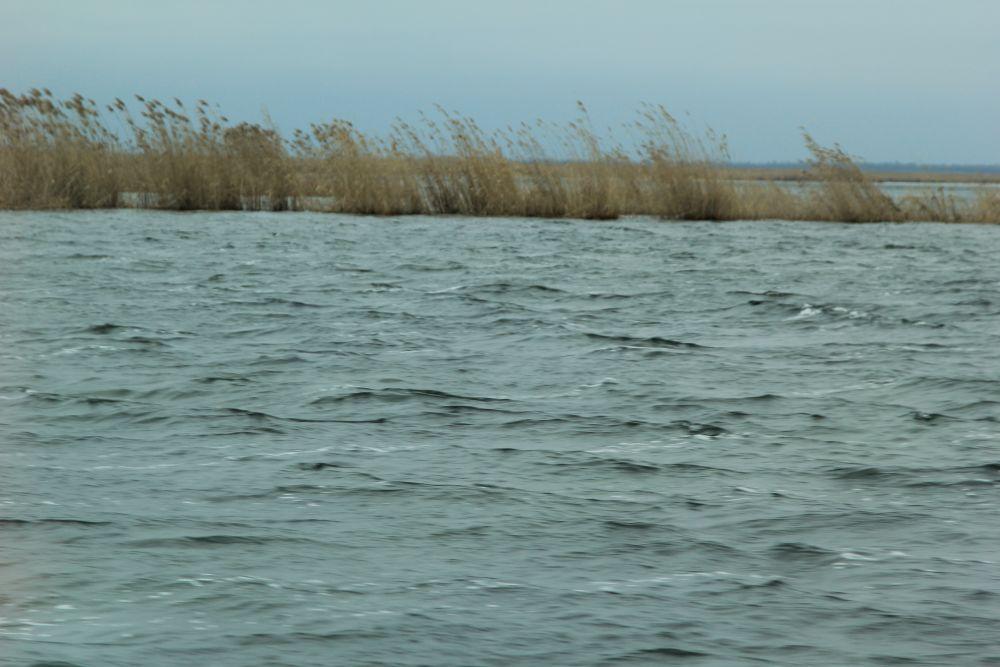 Во многих местах на Веселовском водохранилище льда уже нет.
