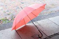 Погода в понедельник, 11 февраля, в Украине ожидается в основном без осадков, правда на Западе дождливо, а на Прикарпатье даже будет идти мокрый снег.