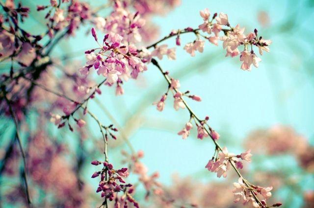 Обновляем энергетику: 10 вещей, от которых нужно избавиться до весны