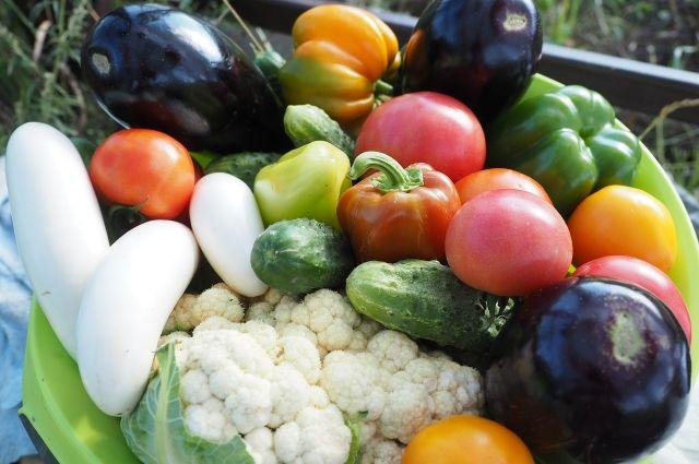 Чтобы получить хороший урожай, нужно уже начинать готовиться к дачному сезону.