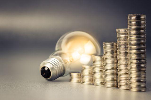 Глава Нацкомиссии рассказала о резком росте долгов населения за свет